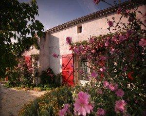 Bienvenue au Nid Gâtinais, Gîte rural en Deux Sèvres. dans presentation img_1891-300x238